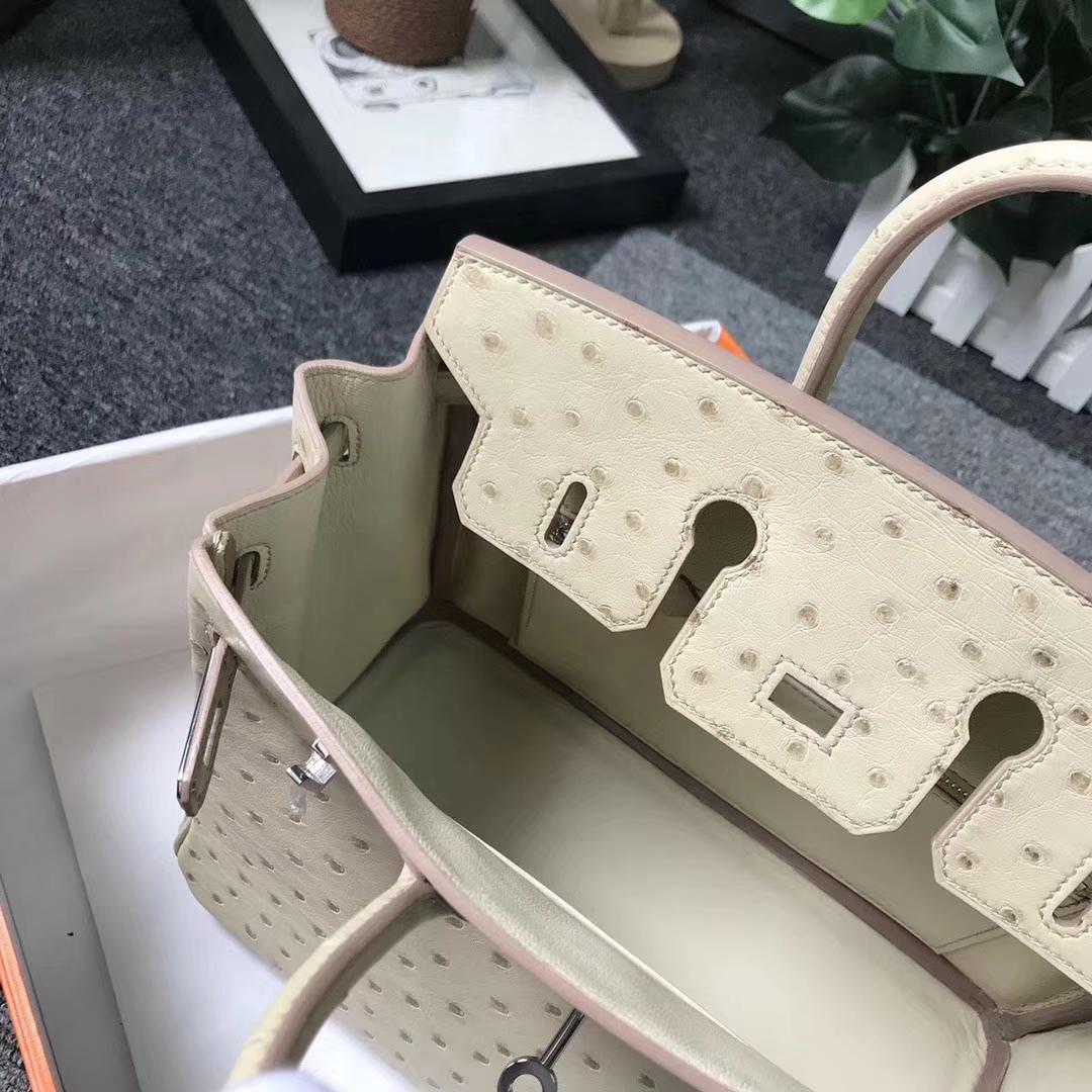 Hermès(爱马仕)Birkin铂金包 羊毛白 原厂御用顶级鸵鸟皮 银扣 25cm